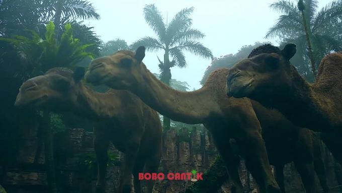 Taman Safari Bogor - Indonesia Safari park [FULL HD] - part 2