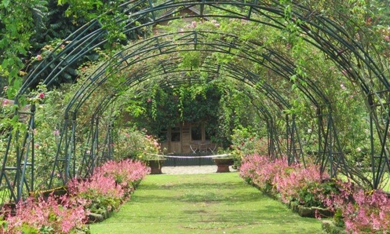 Wisata Ke Kebun Mawar Situhapa