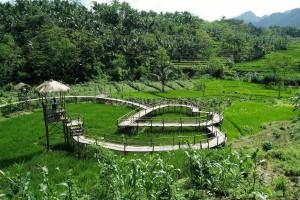 Jembatan Cinta Desa Wisata Panusupan