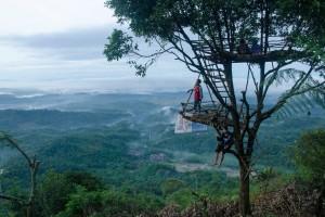 Rumah Pohon Desa Wisata Panusupan
