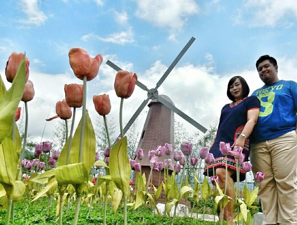 Windmill Small World Small World