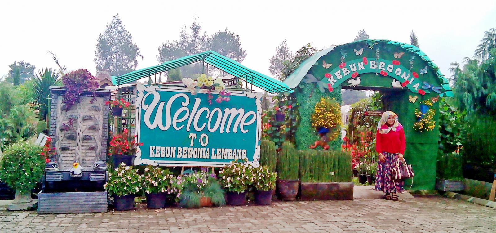 Kebun Begonia Bandung