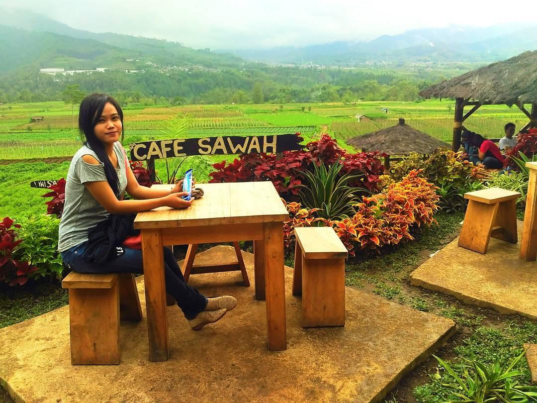 Cafe Sawah Pujon Malang