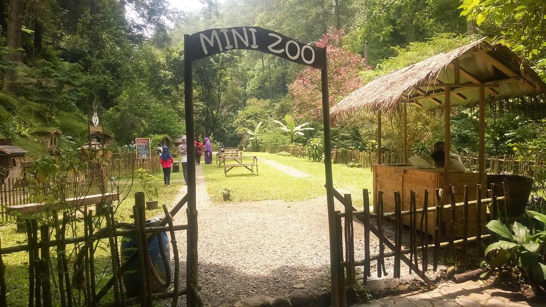 Mini zoo Maribaya Resort