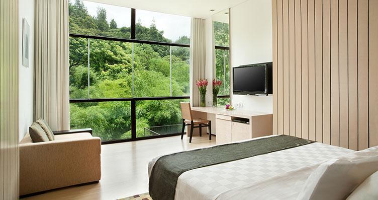 Hillside studio Padma hotel