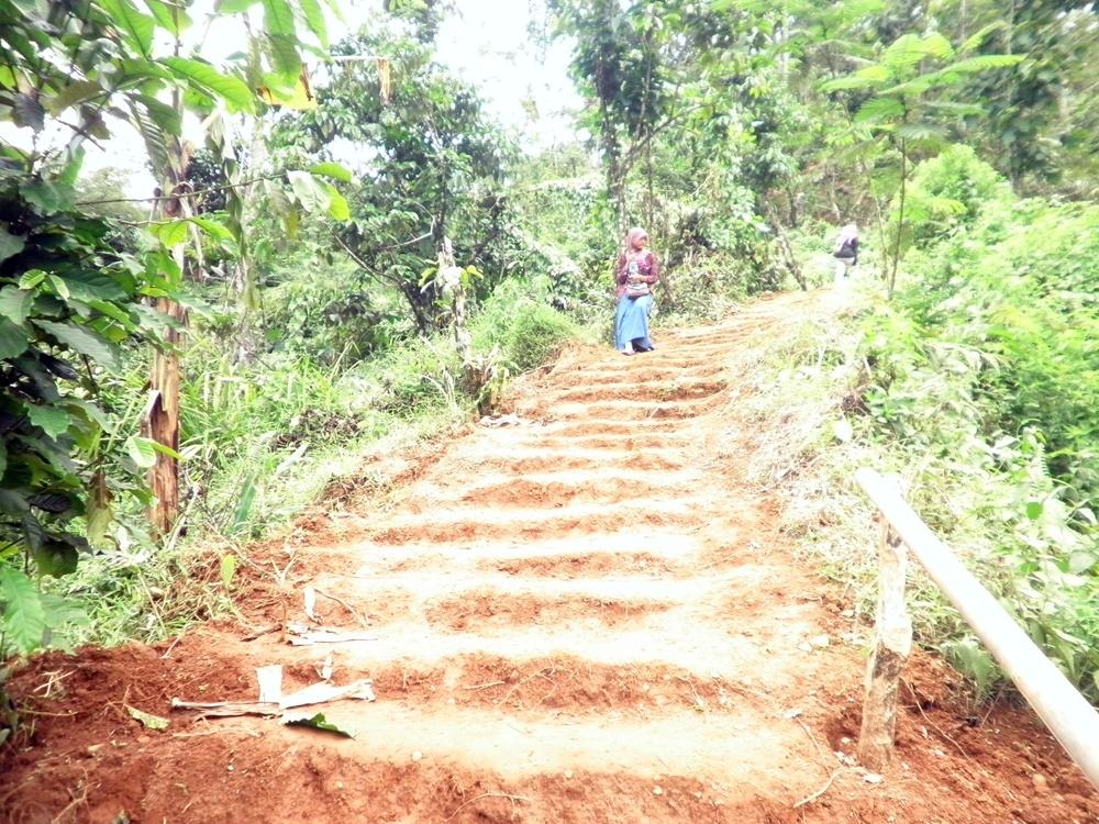 Rute pendakian Desa Wisata Panusupan Rumah Pohon Desa Wisata Panusupan
