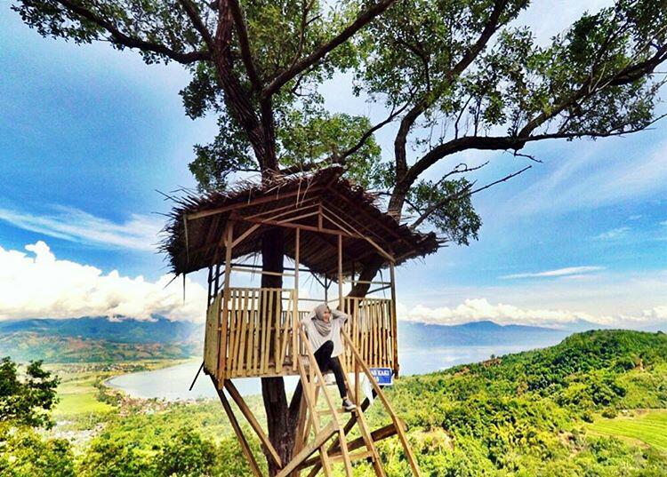 Rumah Pohon Gobah Aripan Rumah Pohon Gobah Aripan