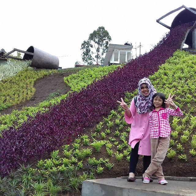 Taman Taman kelinci & Rumah Hobbit