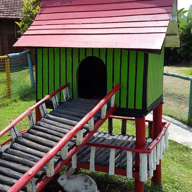 Rumah kelinci Taman kelinci & Rumah Hobbit
