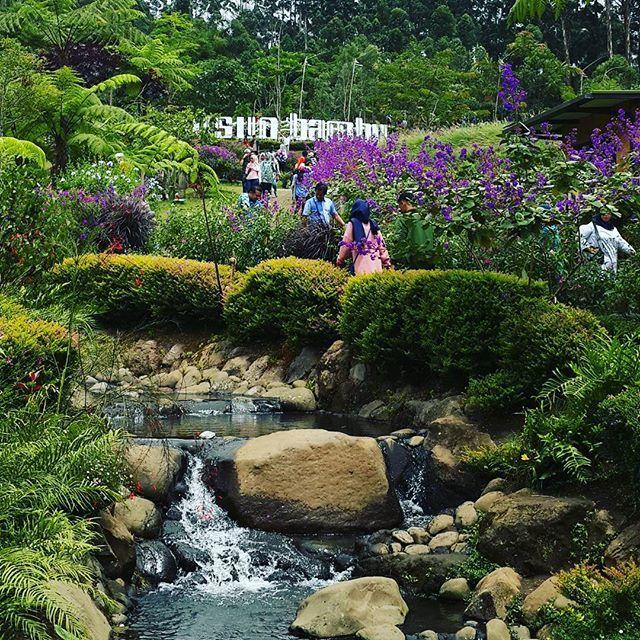 Taman Dusun Bambu