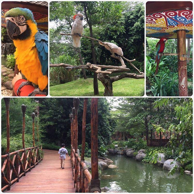 Faunaland play Jakarta