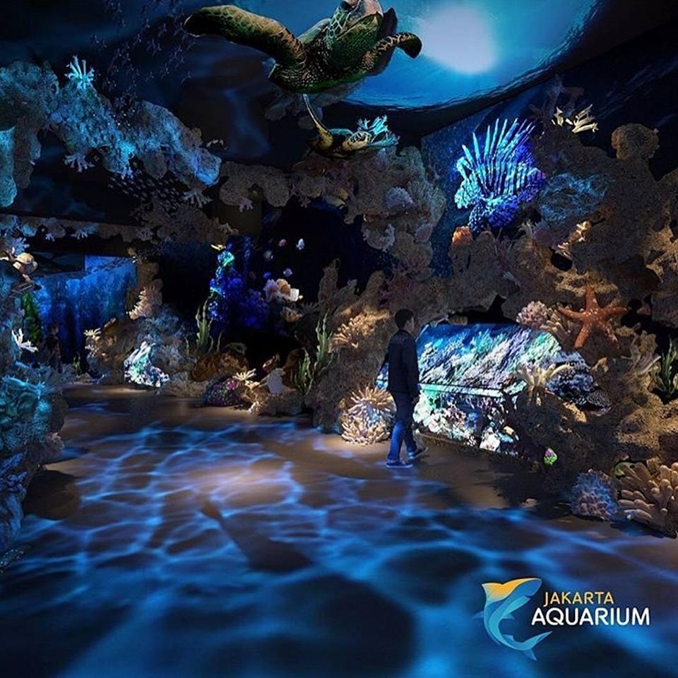 Jakarta aquarium 2 Jakarta Aquarium