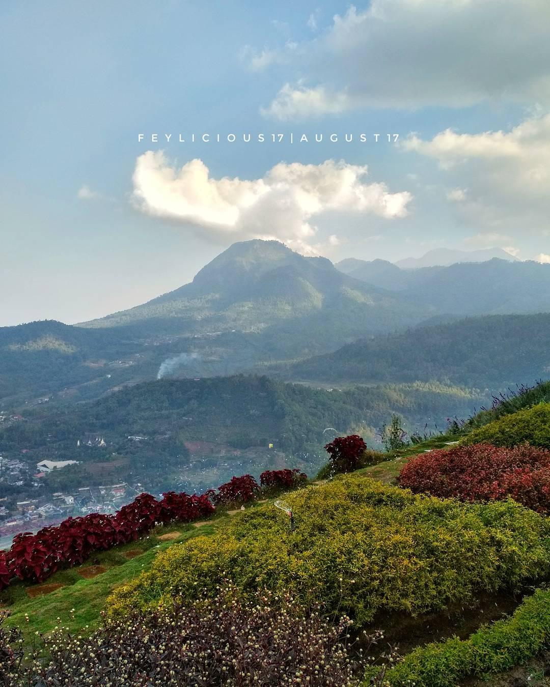 Spot Selfie Terbaru Di Malang, Ya Di Taman Langit Gunung