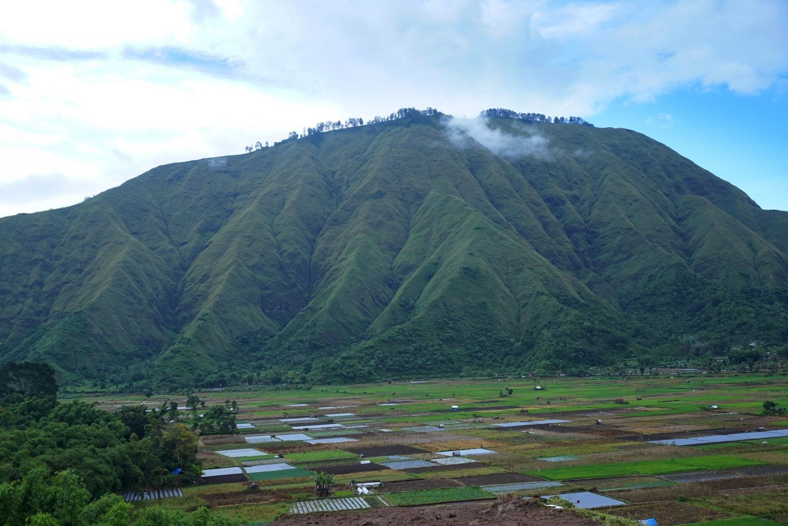 Bukit Selong Lombok