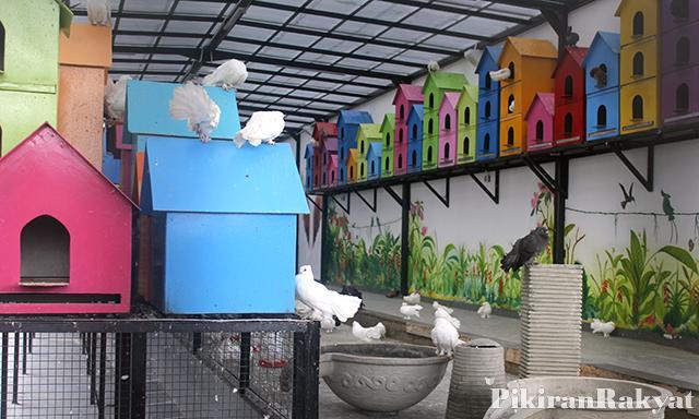 Rabbit Town Rabbit Town