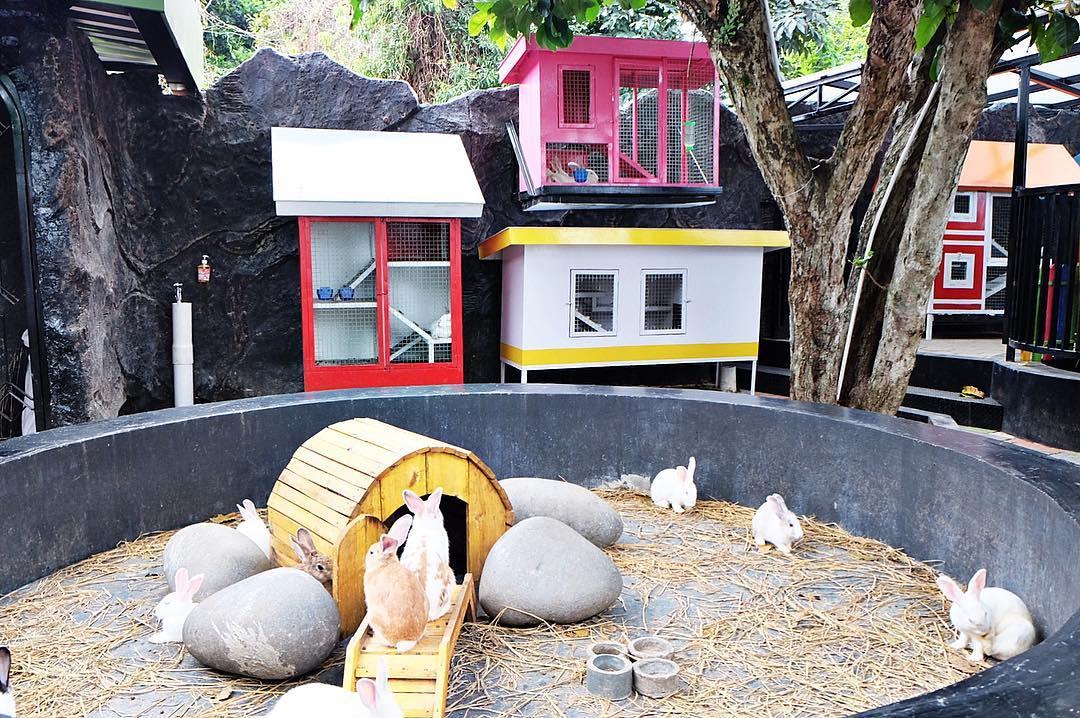 Jam Operasional Buka Dan Tutup Rabbit Town Bandung