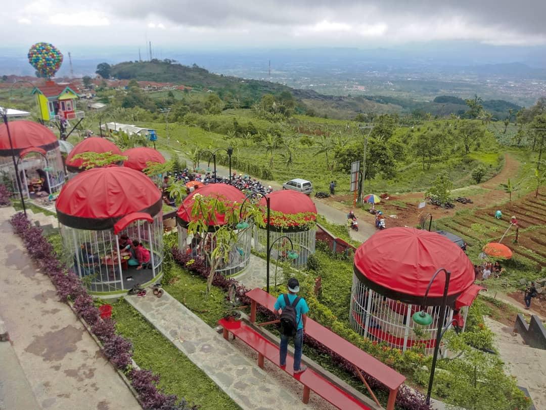 Tiket masuk, rute dan jam buka Pondok Pinus Palutungan Cirebon