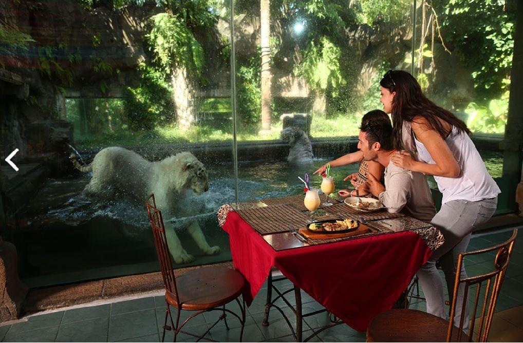 taman safari2 Taman Safari 2