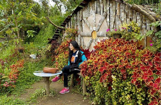 Rumah Hobbit Ngasem Park foto oleh @reksitawardani Ngasem Park