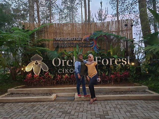 Orchid Forest Orchid Forest Cikole