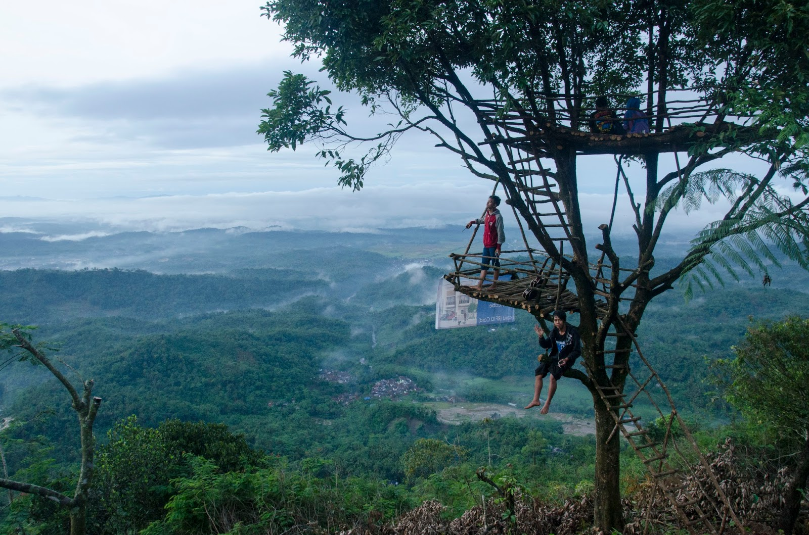 Rumah Pohon Desa Wisata Panusupan Purbalingga
